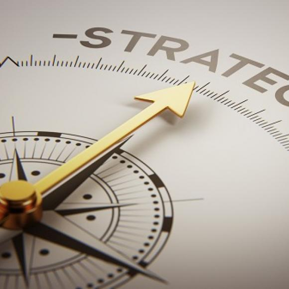 A Strategic Plan for emerging software companies.