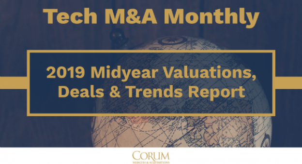 2019 midyear report