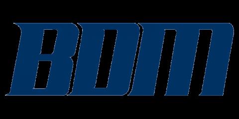 BDM International, Inc.