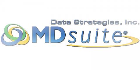 Data Strategies Inc.