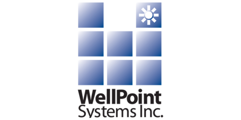 WellPoint Systems Inc.