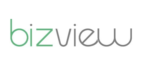 Bizview Systems